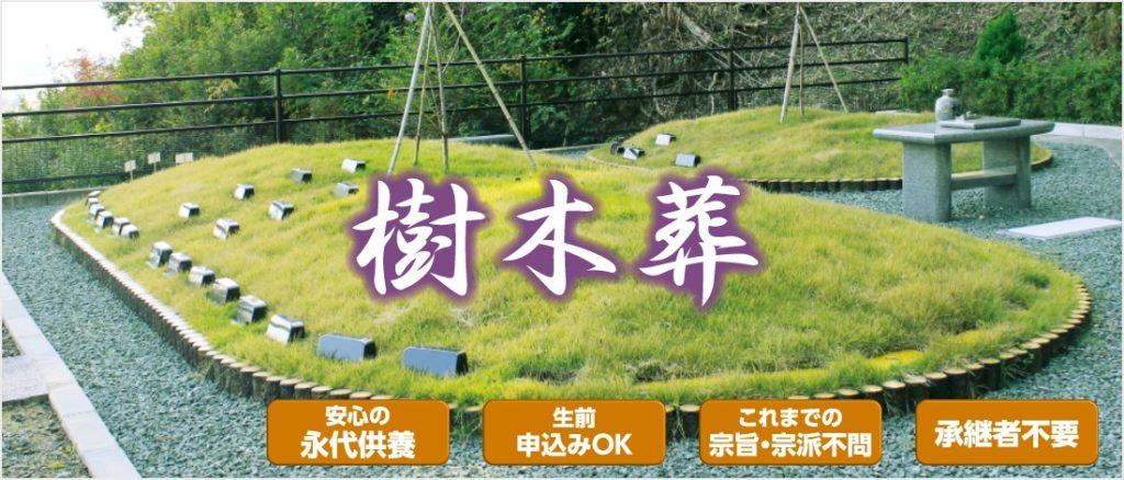高知市で樹木葬をお探しならドリーマー高知葬祭へお任せください
